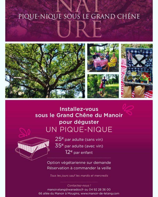 Venez piqueniquer au Manoir #nature#jardin#chene#arbres#mougins#provence